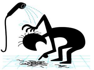 (ছবি) কমবয়সেই চুল ওঠার সমস্যায় ভুগছেন? জেনে নিন আসল কারণ