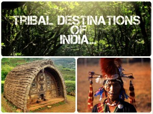 5 Tribal Destinations India