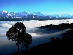 Kausani Paradise Uttarakhand