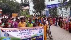 Tmc Demands For Tea Garden Workers To Open Garden And Start Work