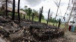 Stop Violence On Rohingya Says International Commission