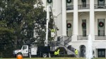 The White House S Famous Magnolia Tree Be Cut Back