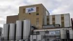 France S Lactalis Recalls Boxes Powdered Baby Milk From Bangladesh