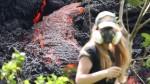 Volcanic Nature Game Hawaii Usa