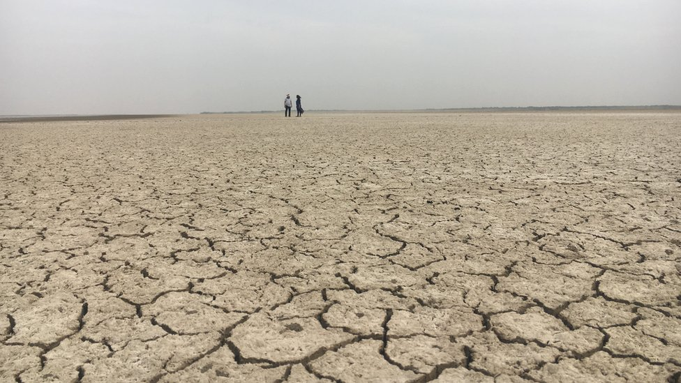 cracked and dry fields in Gujarat