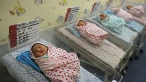 Premature Lambs Kept Alive Plastic Bag Womb